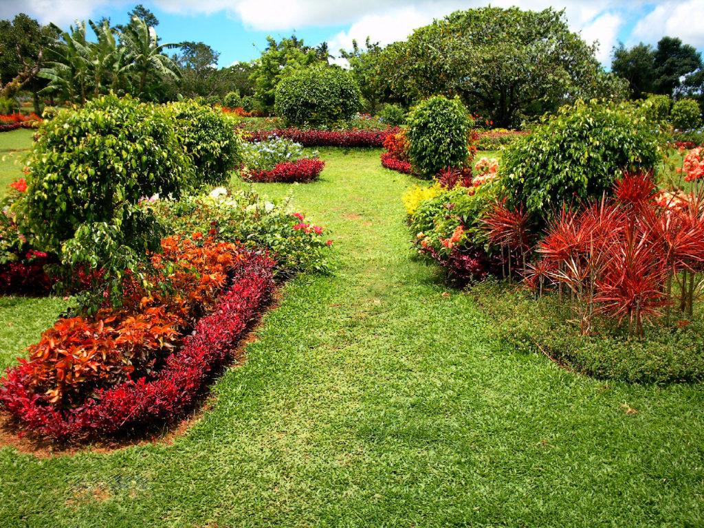 Paradizoo Garden
